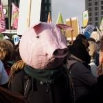 Auch unser Pappmasché-Schweinekopf musste sich etwas gedulden bevor es losgehen konnte.