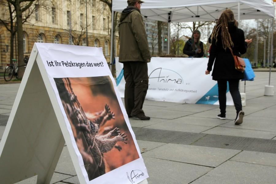 """Poster zur Anti-Pelz-Aktion: """"Ist ihr Pelzkragen das wert?"""""""