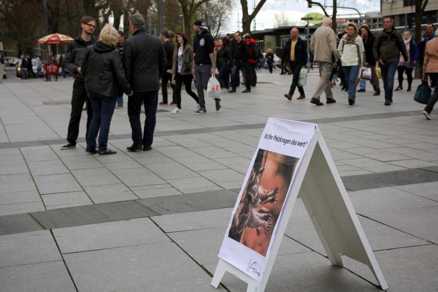 Flyeraktion im Rahmen der Anti-Pelz-Aktion vor der Altmarktgalerie