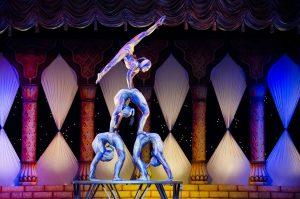 Akrobaten - Verbot von Zirkussen mit Wildtieren in Dresden