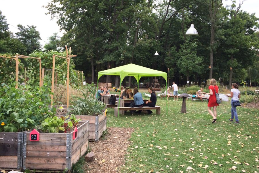 Gäste beim veganen Brunch im Golgi Park 2016