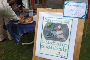 Plakat zum Taubenprojekt auf dem veganen Frühlingsbrunch im Golgi-Park 2017