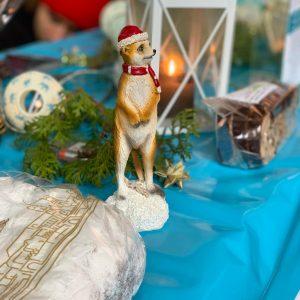 Unser Vereins-Maskottchen im Weihnachtslook